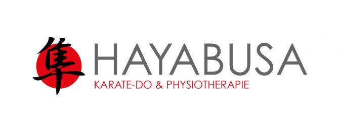 hayabusa_final_004